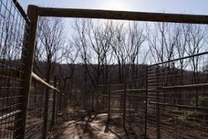 enclosure-001